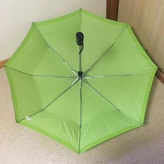 totes - 【totes】折りたたみ傘 グリーン水玉