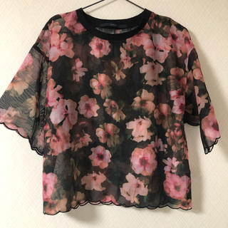 リベットアンドサージ(rivet & surge)の花柄 オーガンジー プルオーバー(Tシャツ(半袖/袖なし))