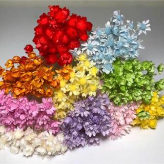 スターフラワー ミニ100本 ドライフラワー 花材 ハーバリウム花材(ドライフラワー)