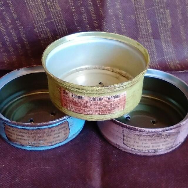 多肉植物♪レーマニー♪抜き苗&リメイク缶♪ ハンドメイドのフラワー/ガーデン(その他)の商品写真