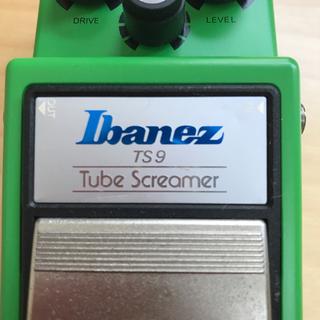 アイバニーズ(Ibanez)のIbanez ts-9 中古(エフェクター)