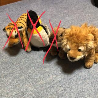 ライオンぬいぐるみ(ぬいぐるみ)
