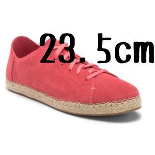 トムズ(TOMS)の【海外限定】TOMS トムズ トムス スニーカー 赤 Sneaker(スニーカー)