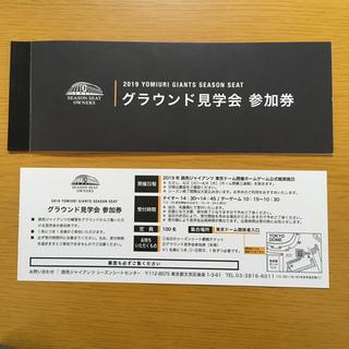 ヨミウリジャイアンツ(読売ジャイアンツ)の巨人 グラウンド見学券 2枚(野球)