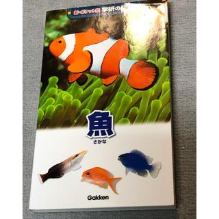 ガッケン(学研)のお値下げ中!ポケット図鑑 魚 学研(その他)