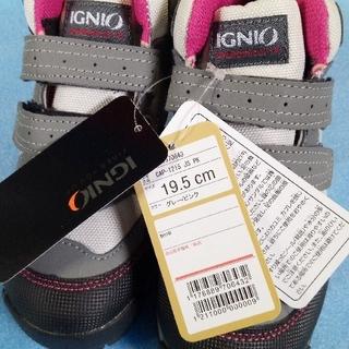 ジーティーホーキンス(G.T. HAWKINS)の新品 イグニオ トレッキングシューズ 19,5センチ 登山靴 レジャースニーカー(スニーカー)