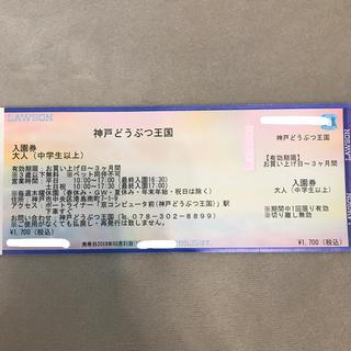 神戸どうぶつ王国 大人1人 チケット