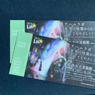 チームラボ 姫路市立美術館 ペア鑑賞券(美術館/博物館)