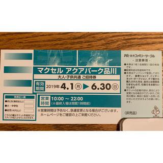 マクセル アクアパーク品川  優待券 チケット