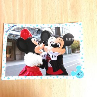 ディズニー(Disney)のミッキー ミニー  BBB ビッグバンドビート スペフォ 写真 フォト 旧顔(写真)