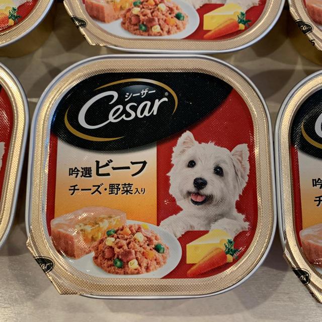 CASAR(シーザー)のシーザー*ビーフ*チーズ野菜入り12個 その他のペット用品(ペットフード)の商品写真