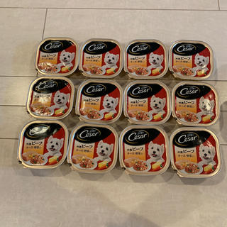 CASAR - シーザー*ビーフ*チーズ野菜入り12個