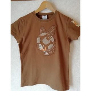 アディダス(adidas)のadidas レディースTシャツ 茶色(Tシャツ(半袖/袖なし))