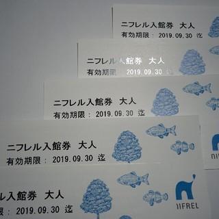 ニフレル チケット (大人)