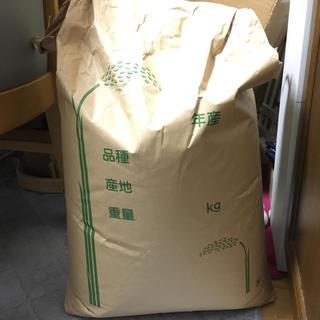 米 玄米 25㎏ 29年度産 【引き取り優先】足立区(米/穀物)