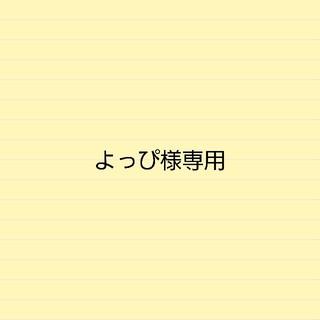 よっぴ様専用3Dスト10(ヘアアイロン)