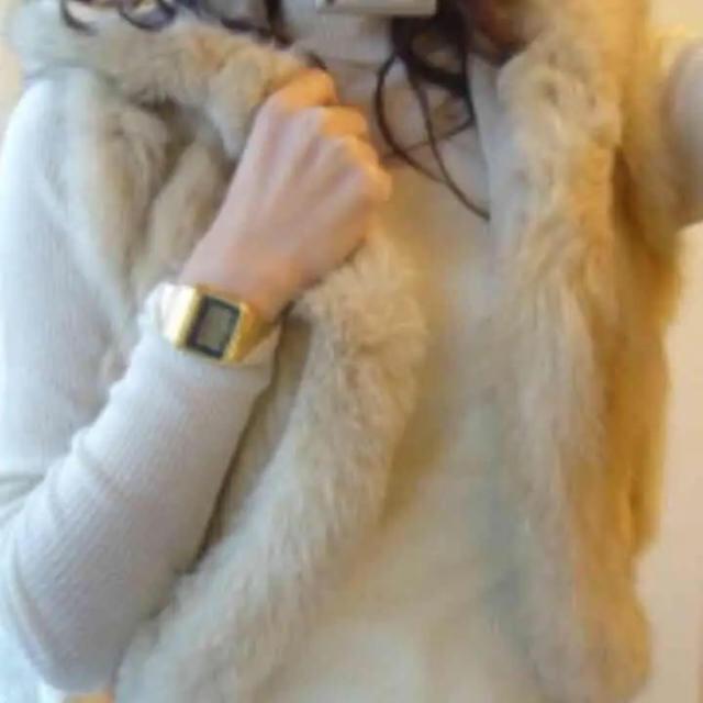 MERCURYDUO(マーキュリーデュオ)のマーキュリーデュオのラビットファーベスト  レディースのジャケット/アウター(毛皮/ファーコート)の商品写真