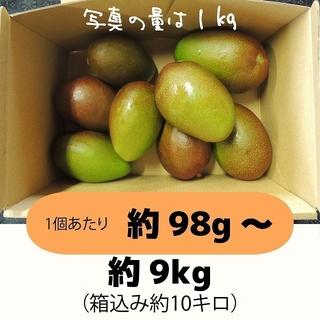 [橙10]約9キロ グリーンマンゴー 青マンゴー 摘果マンゴー 加工用(フルーツ)