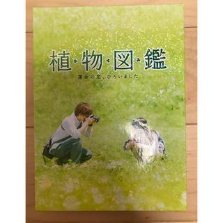 サンダイメジェイソウルブラザーズ(三代目 J Soul Brothers)の映画 植物図鑑(日本映画)