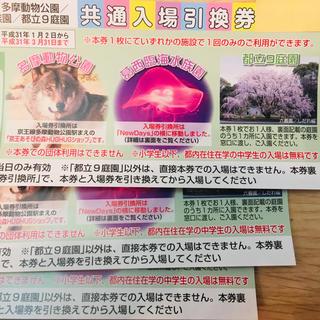 上野動物園 入場引換券3枚