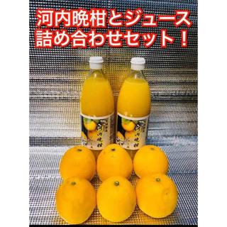 河内晩柑詰め合わせセット 愛媛県産 もぎたてジュース(フルーツ)