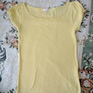 ハニーズ(HONEYS)の半袖 シャツ(Tシャツ(半袖/袖なし))