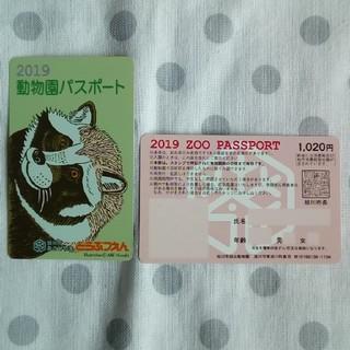 旭山動物園 年間パスポート 未使用2枚