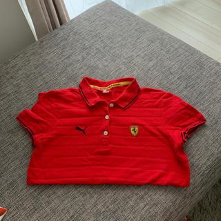 フェラーリ(Ferrari)のゴルフウェアープーマ&フェラーリ(ポロシャツ)