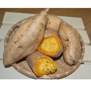 鹿児島県産!マロンゴールドさつまいも 7kg(野菜)