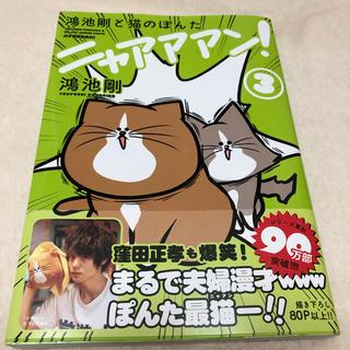 カドカワショテン(角川書店)の鴻池剛と猫のぽんたニャアアアン!3巻(その他)