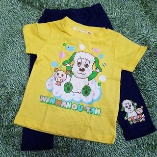 シマムラ(しまむら)の新品★いないいないばあっ!洋服3枚セット 80男女兼用 Tシャツ&ロンT&パンツ(Tシャツ)