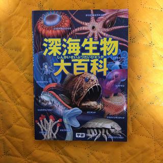 ガッケン(学研)の深海生物大百科(その他)
