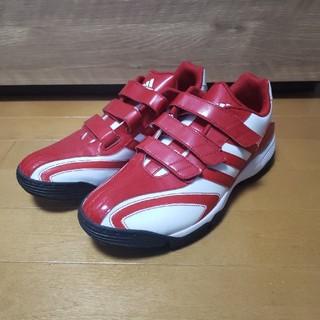 adidas - 新品アディダス adidas トレーニングシューズ