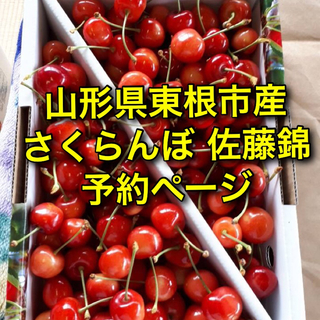 山形県東根市産 さくらんぼ 佐藤錦 予約