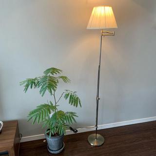 ランプ スライム