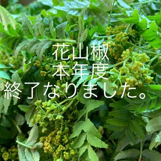 山椒花と葉(野菜)