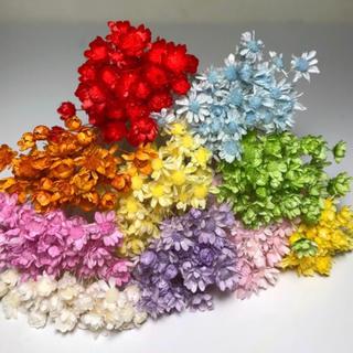 スターフラワー ミニ100本ドライフラワー 花材 レジン素材 ハーバリウム花材(ドライフラワー)