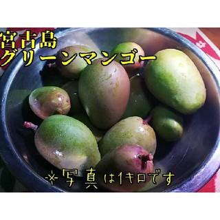 宮古島産 グリーンマンゴー 1キロ(野菜)