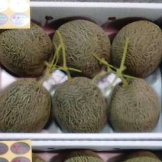 熊本産、肥後グリーンメロン、大箱6~5玉入り(フルーツ)