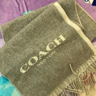 652e3b5170df コーチ(COACH) カシミヤマフラー マフラー/ショール(レディース)の通販 ...