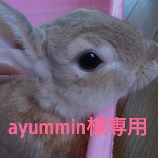 シマムラ(しまむら)の◆◆ayummin様専用!◆◆(ハイヒール/パンプス)
