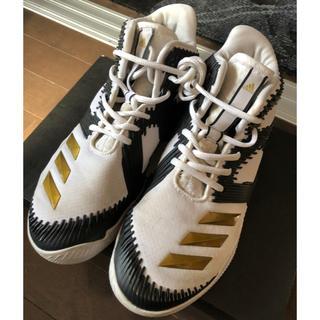 アディダス(adidas)のバスケシューズ(バスケットボール)