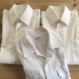 シマムラ(しまむら)のみかん様専用  学生服 ワイシャツ(シャツ)