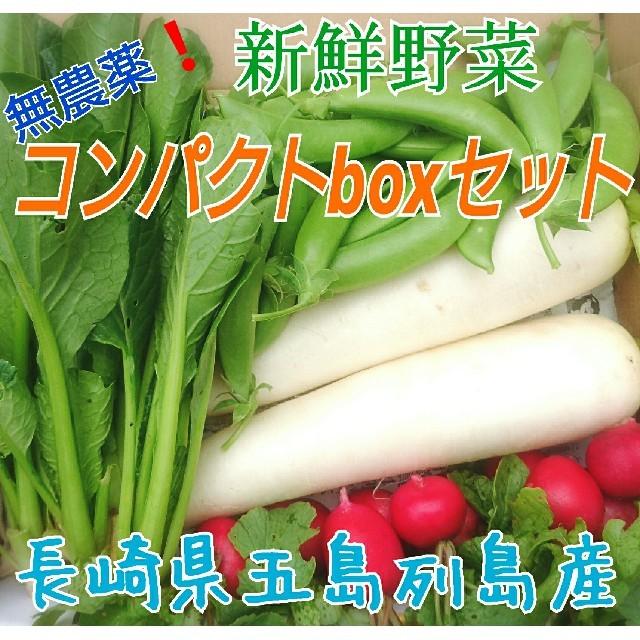 無農薬❗新鮮野菜セット(コンパクトbox) 長崎県五島列島産 食品/飲料/酒の食品(野菜)の商品写真