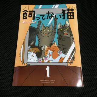 コウダンシャ(講談社)の飼ってない猫 1 関口かんこ(女性漫画)