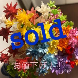 ハーバリウム花材 スターフラワーブロッサムとミニコーンフラワー(ドライフラワー)