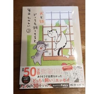 コウダンシャ(講談社)の犬と猫どっちも飼ってると毎日たのしい 3(その他)
