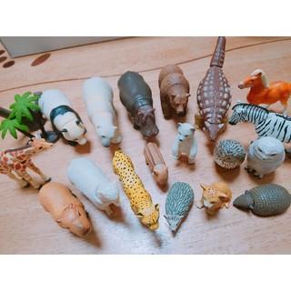 タカラトミー(Takara Tomy)の【まとめ売り】アニア 53体セット/恐竜、動物、海の生き物 他 +オマケ(その他)
