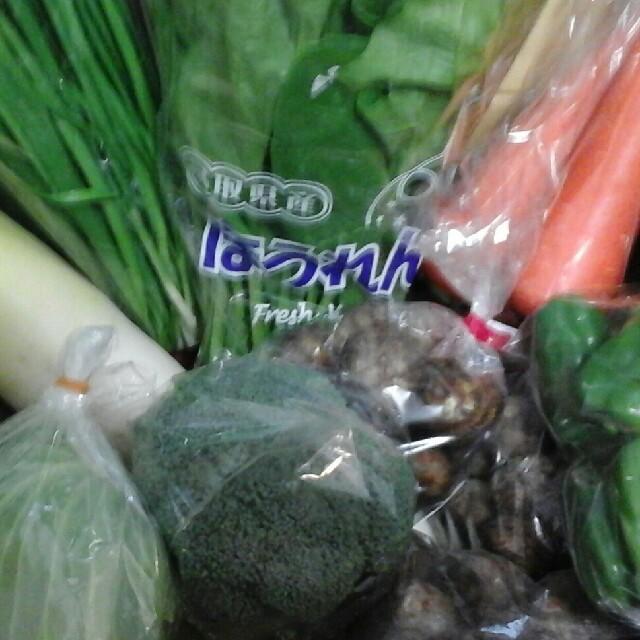大山山麓無農薬無化学肥料栽培野菜5-6品送料込 食品/飲料/酒の食品(野菜)の商品写真
