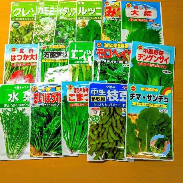 【80種類】野菜の種、ハーブの種、花の種 自分の欲しい種類を選んで購入!  食品/飲料/酒の食品(野菜)の商品写真